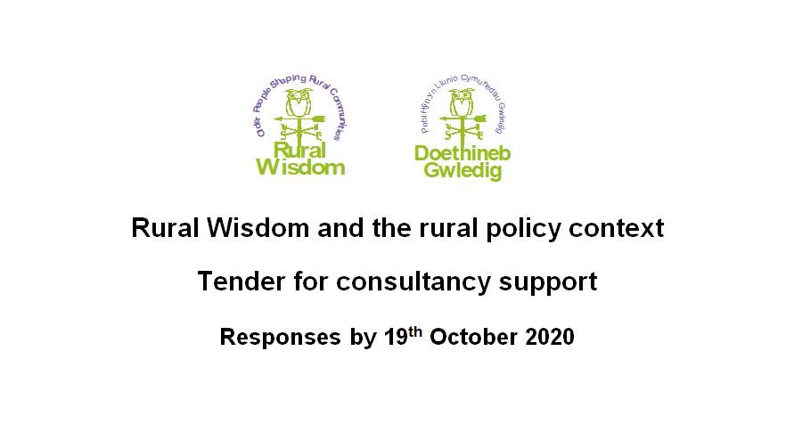 Consultancy Tender information sheet screenshot with Rural Wisdom logos